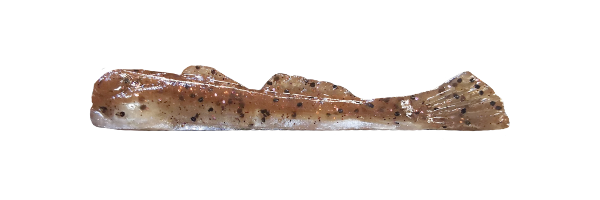 Brown Goby/Silver Belly (G003-008)