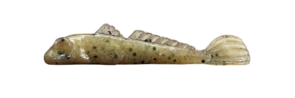 Speckled Goby (G010-025)
